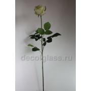 Роза салатовая 80 см