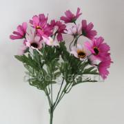 Космеи розовые 30 см