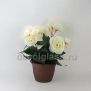 Бегонния/кашпо белая 19 см