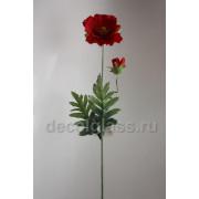 Мак красный 66 см