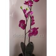Орхидея малиновая 55 см