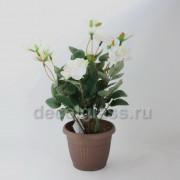 Роза /кашпо белая 25 см